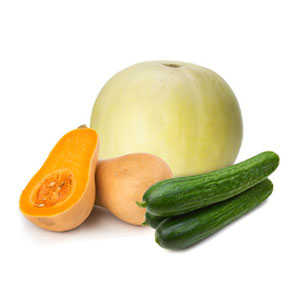 Cucumbers-Melons-and-Squash