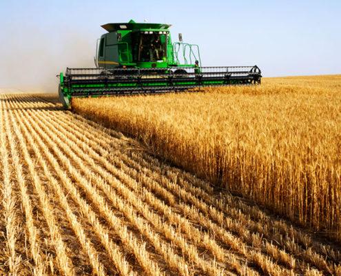 Agriculture Metrics